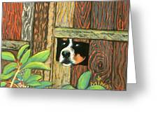 Peek-a-boo Fence Greeting Card