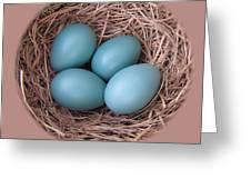 Peek Into A Robin's Nest Greeting Card