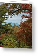 Peeking At The Smokies Greeting Card