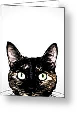 Peeking Cat Greeting Card