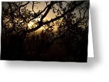 Peeking Sun Greeting Card