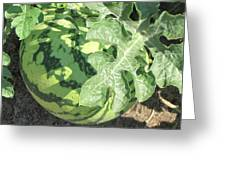 Peeking Watermelon Greeting Card