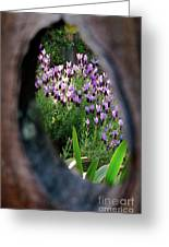 Peephole Garden Greeting Card by CML Brown