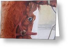 Peeping Paint Glin Fair Greeting Card