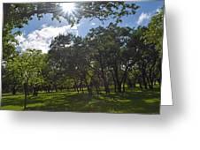 Peeping Sun Greeting Card