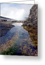 Peggy's Cove Tide Pool Greeting Card
