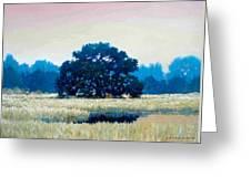 Peggys Oak Greeting Card