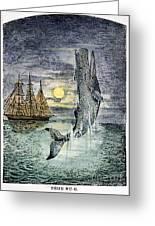 Pehe Nu-e: Moby Dick Greeting Card