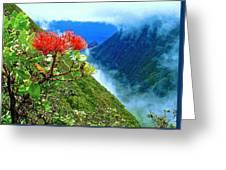 Peles Flower Greeting Card