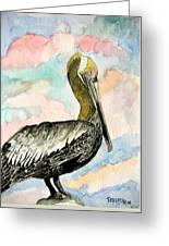 Pelican 2  Greeting Card