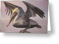 Pelican 2 Wings Spread Greeting Card