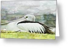 Pelican Art 0006 Greeting Card