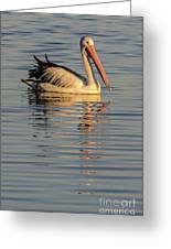 Pelican At Sunset 1 Greeting Card