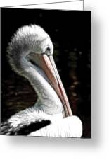 Pelican Dreams Greeting Card