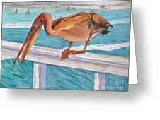Pelican Dude Greeting Card