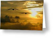 Pelican Flight Into The Clouds Greeting Card