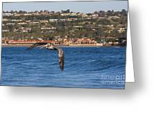 Pelican Flying Above The Pacific Ocean Greeting Card