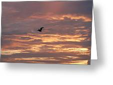 Pelican In Painted Sky Greeting Card