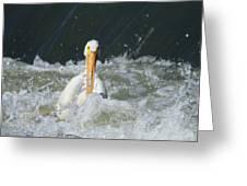 Pelican In Rough Water Greeting Card