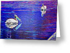 Pelican Mates 2 Greeting Card