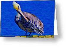 Pelican On Dock Looking Down Greeting Card