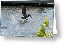 Pelican On The Waves Greeting Card