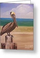 Pelican Rest Stop Greeting Card
