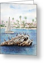 Pelican Rock Greeting Card