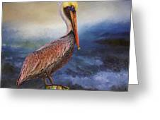 Pelican Seas Greeting Card