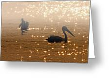 Pelican Sunrise Greeting Card