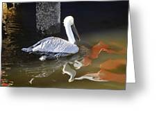 Pelican Swim Greeting Card