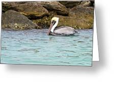 Pelican Trolling Greeting Card