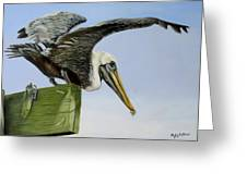 Pelican Wings Greeting Card