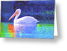 Pelican With Blue Greeting Card