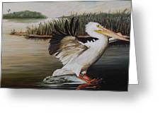 Pelicans At The Confluence Greeting Card