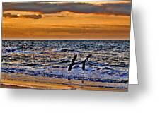 Pelicans Crusing The Coast Greeting Card