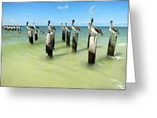 Pelicans On Pier Pilings Greeting Card