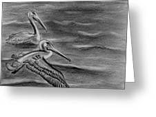 Pelicans On The Chesapeake Greeting Card