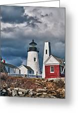 Pemaquid Point Lighthouse 4821 Greeting Card