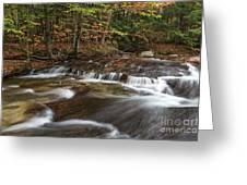 Pemigewasset River Greeting Card