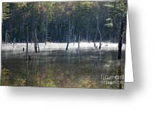 Pemigewasset Wilderness - White Mountains New Hampshire Usa Greeting Card