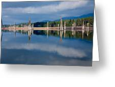 Pend Oreille River Pilings Greeting Card