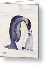 Penguin And Baby Greeting Card
