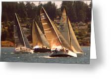 Penn Cove Sailing  Greeting Card