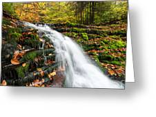 Pennsylvania Autumn Ricketts Glen State Park Waterfall Greeting Card