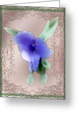 Penny Postcard Wildflower Greeting Card