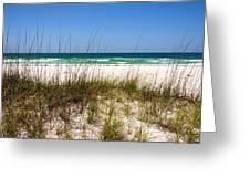 Pensacola Beach 1 - Pensacola Florida Greeting Card