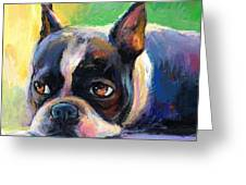 Pensive Boston Terrier Dog Painting Greeting Card