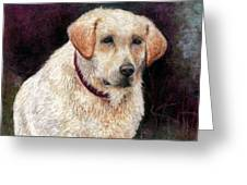Pensive Golden Retriever Greeting Card by Melissa J Szymanski