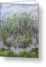 Pensive Grasses Greeting Card